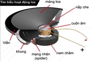 Những điều cần biết về Loa